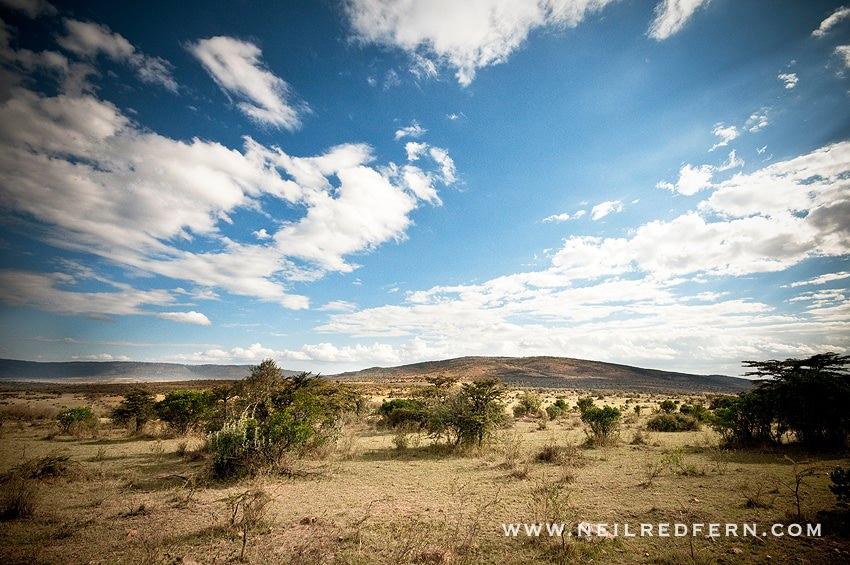 Safari Honeymoon Kenya Photographs 16