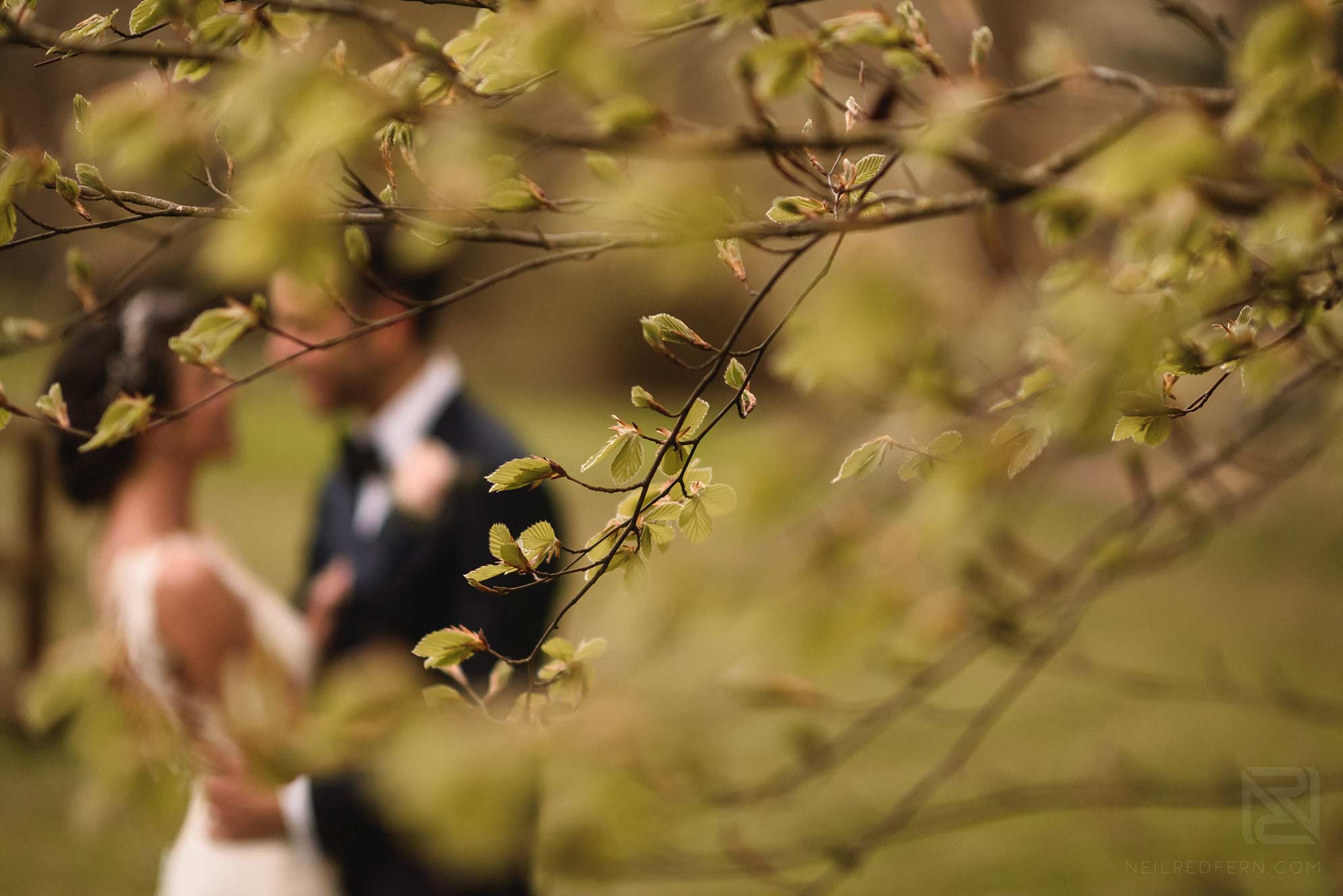 Nanteos-Mansion-wedding-photographs-50