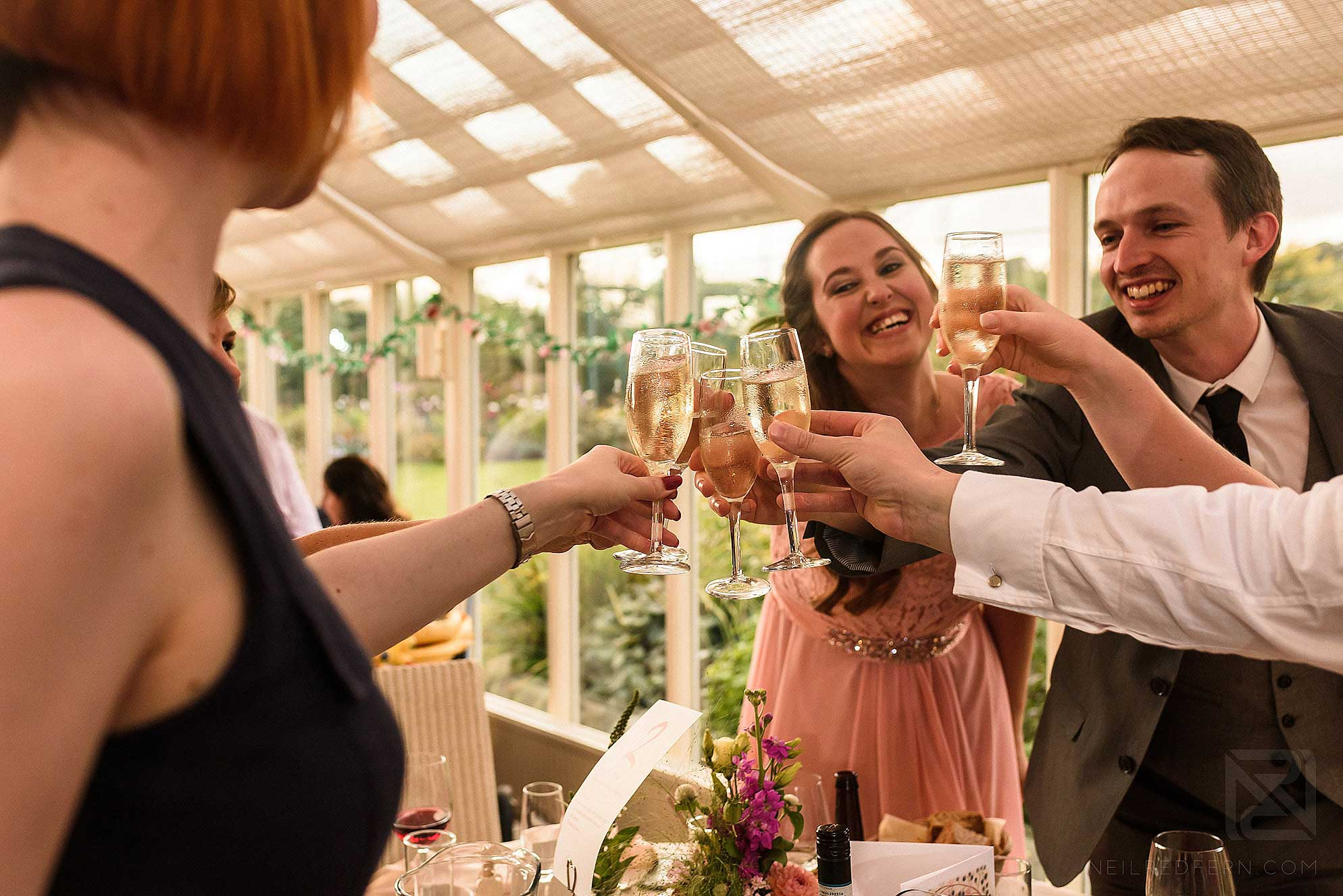 guests clinking glasses
