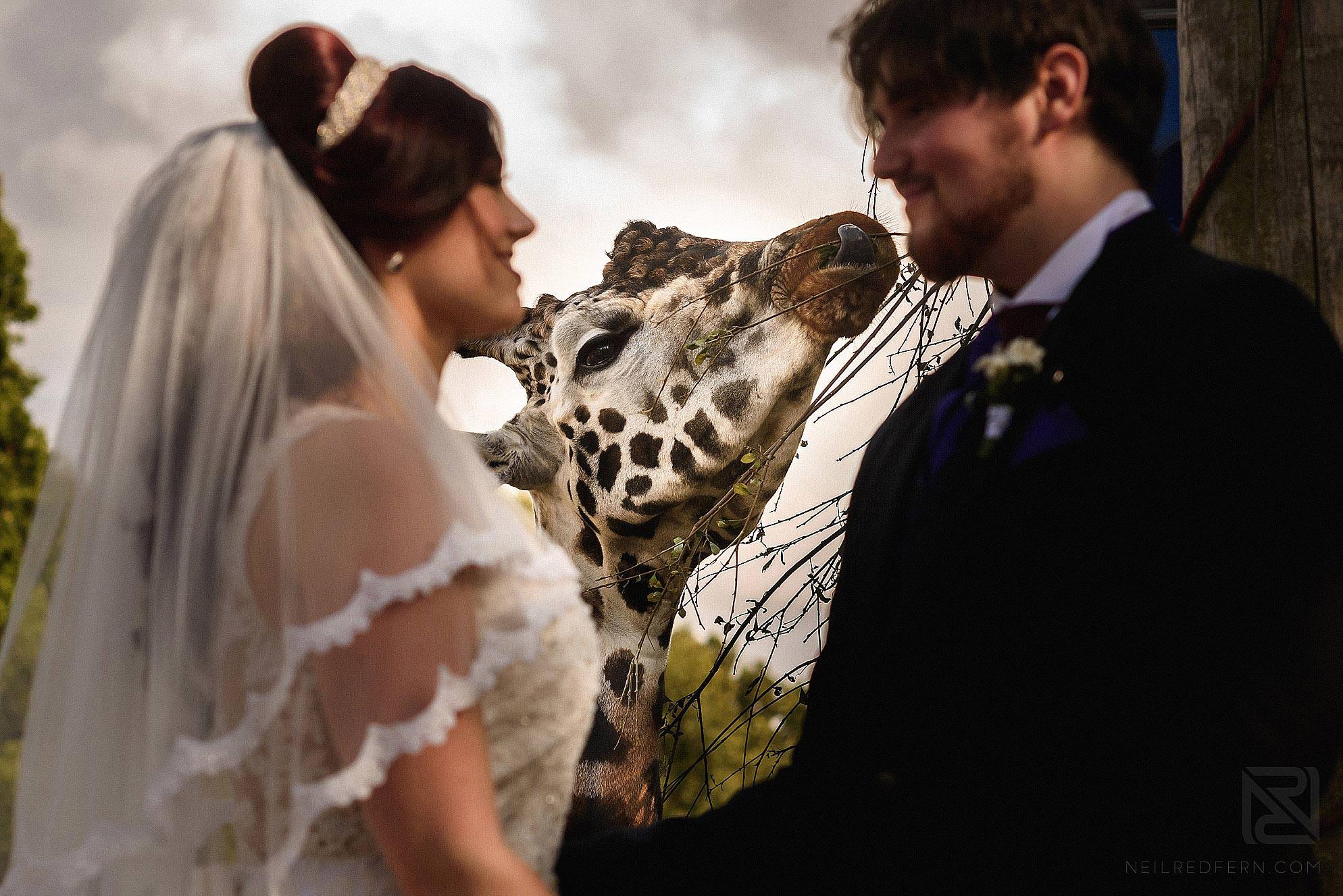 best-wedding-photography-2016-085