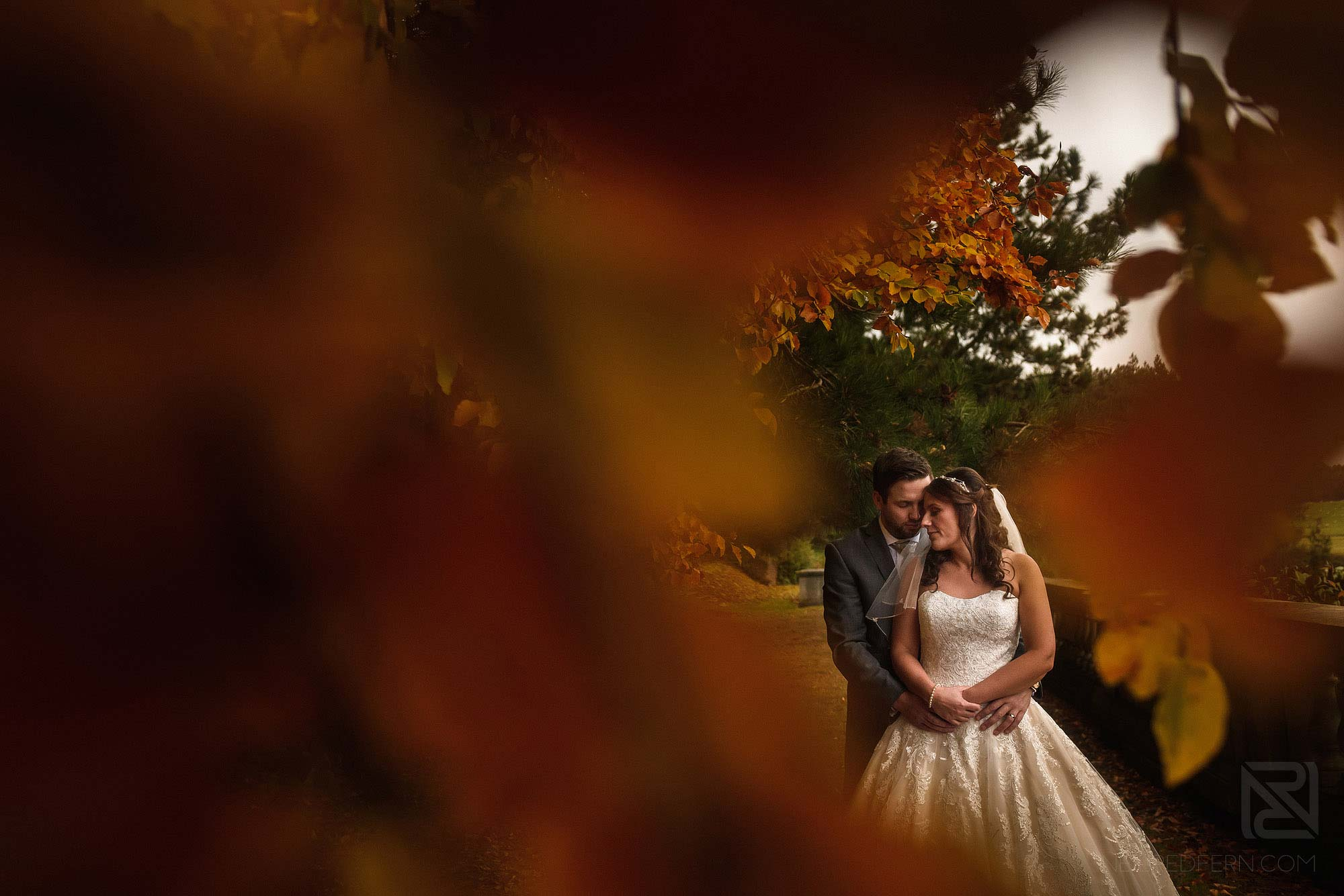 portrait of bride and groom through leaves at Knowsley Hall