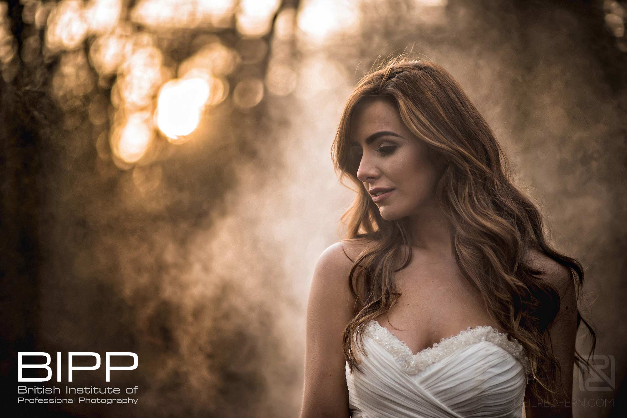 award winning photograph of bride in forest