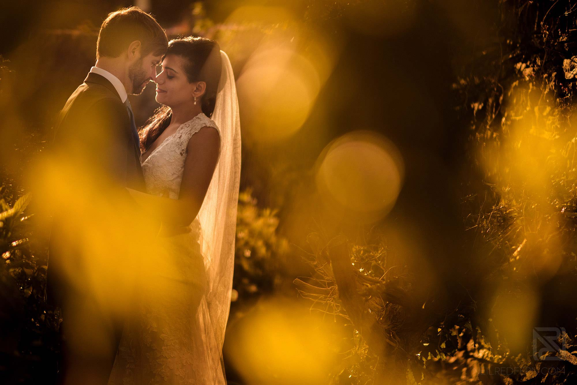 romantic photograph of bride and groom in Portmeirion at golden hour