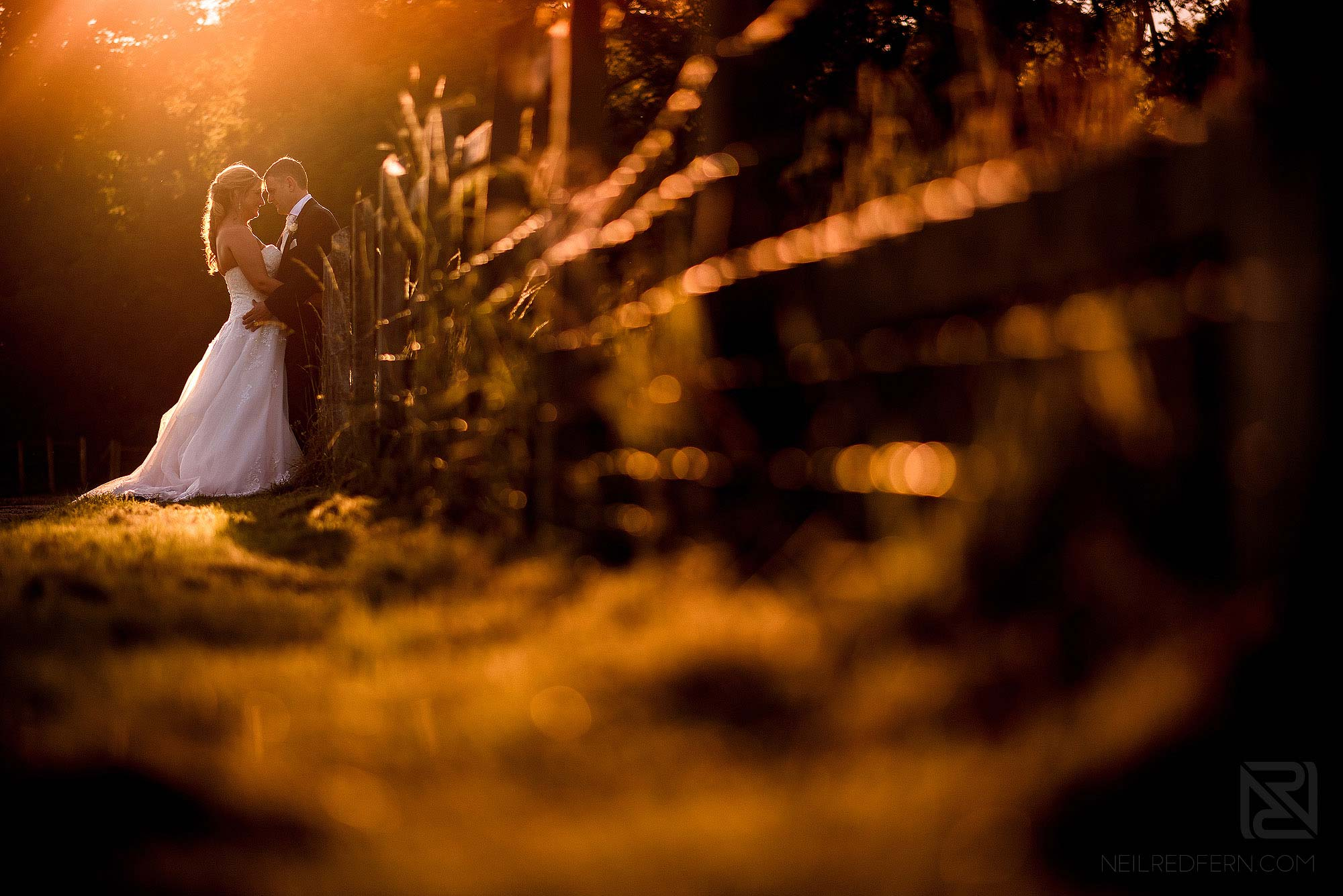 golden hour photograph of couple