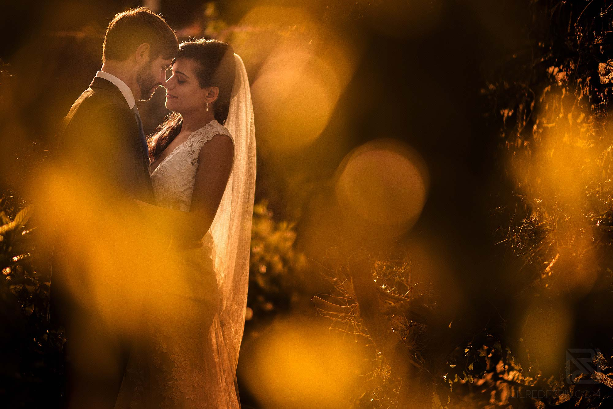 golden hour portrait of bride and groom in Portmeirion