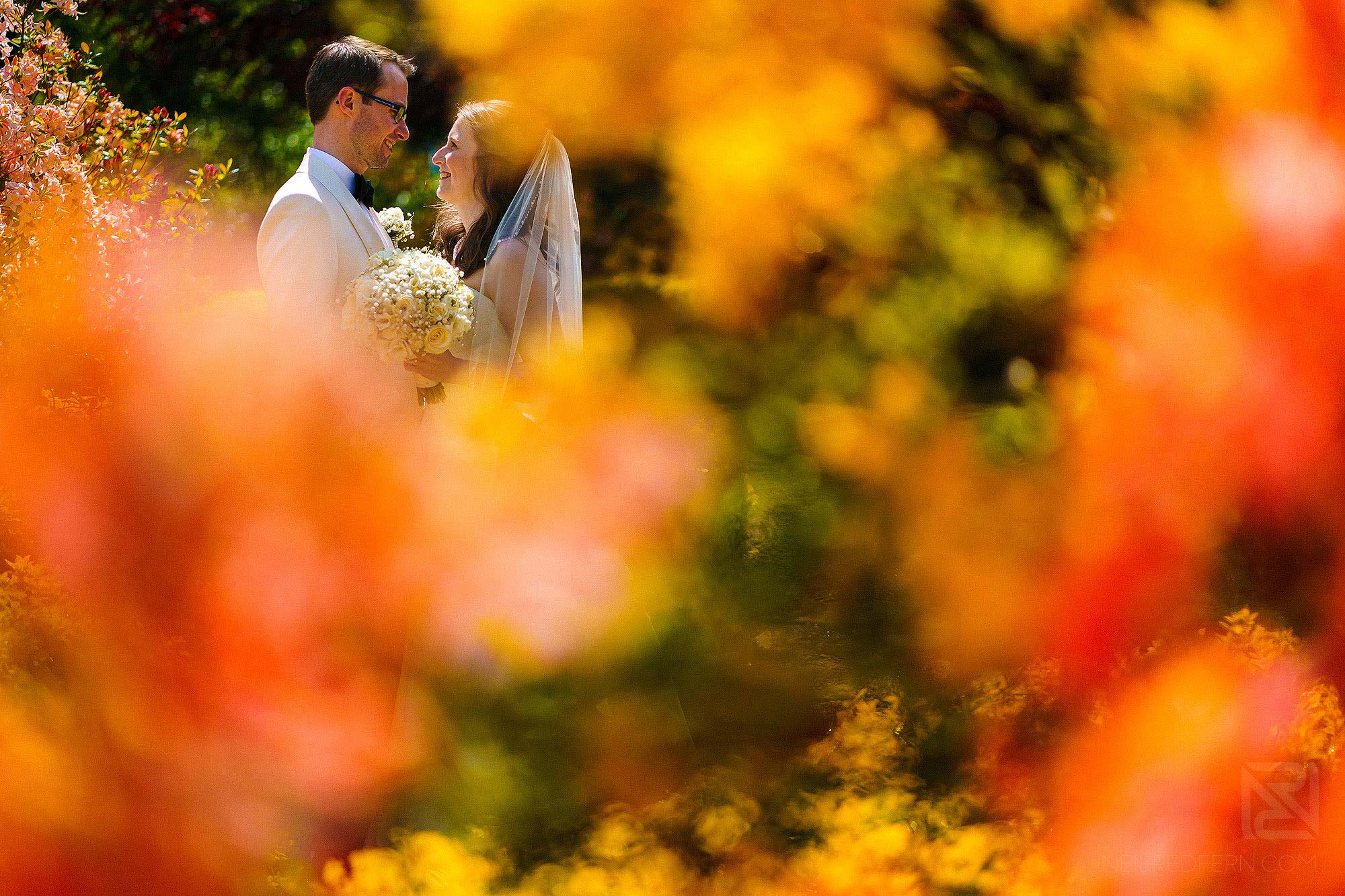 bride and groom in Eaves Hall's gardens during summer wedding