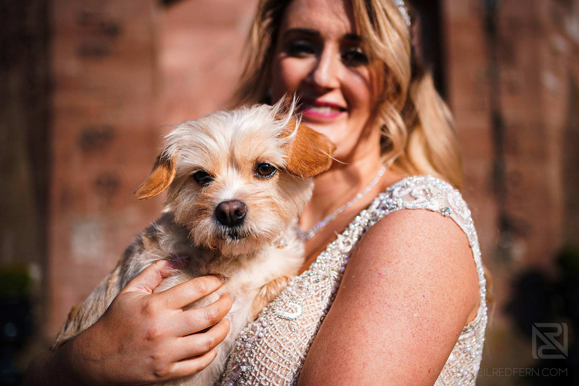 bride holding dog